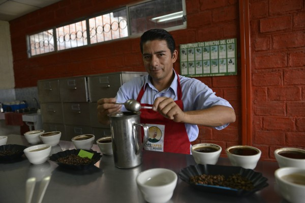 Jose Apolo, FAPECAFES quality controller, checking the quality of the coffee